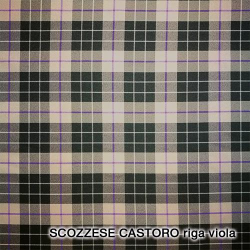 scozzese castoro